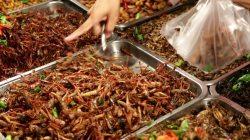 locust buffet