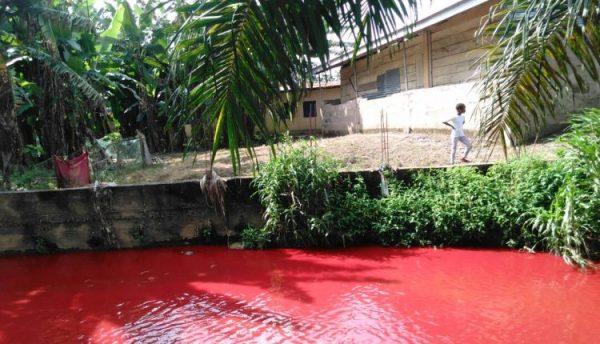 Ghana Blood Red