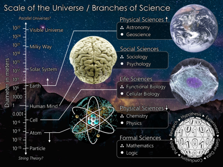 The_Scientific_Universe