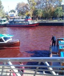 river-turns-blood-red-tigre-buenos-aires-argentina-1