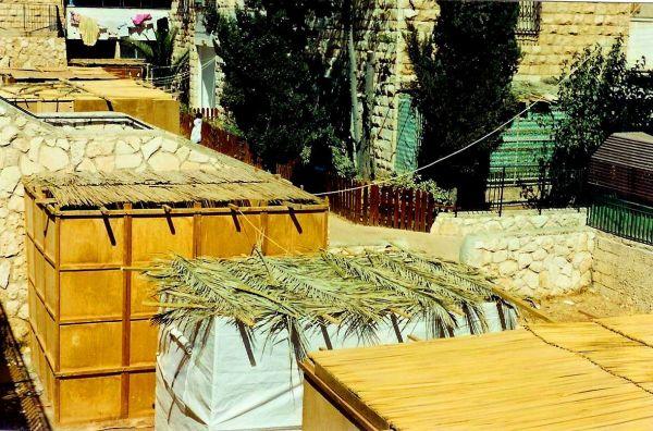 sukkah roofs
